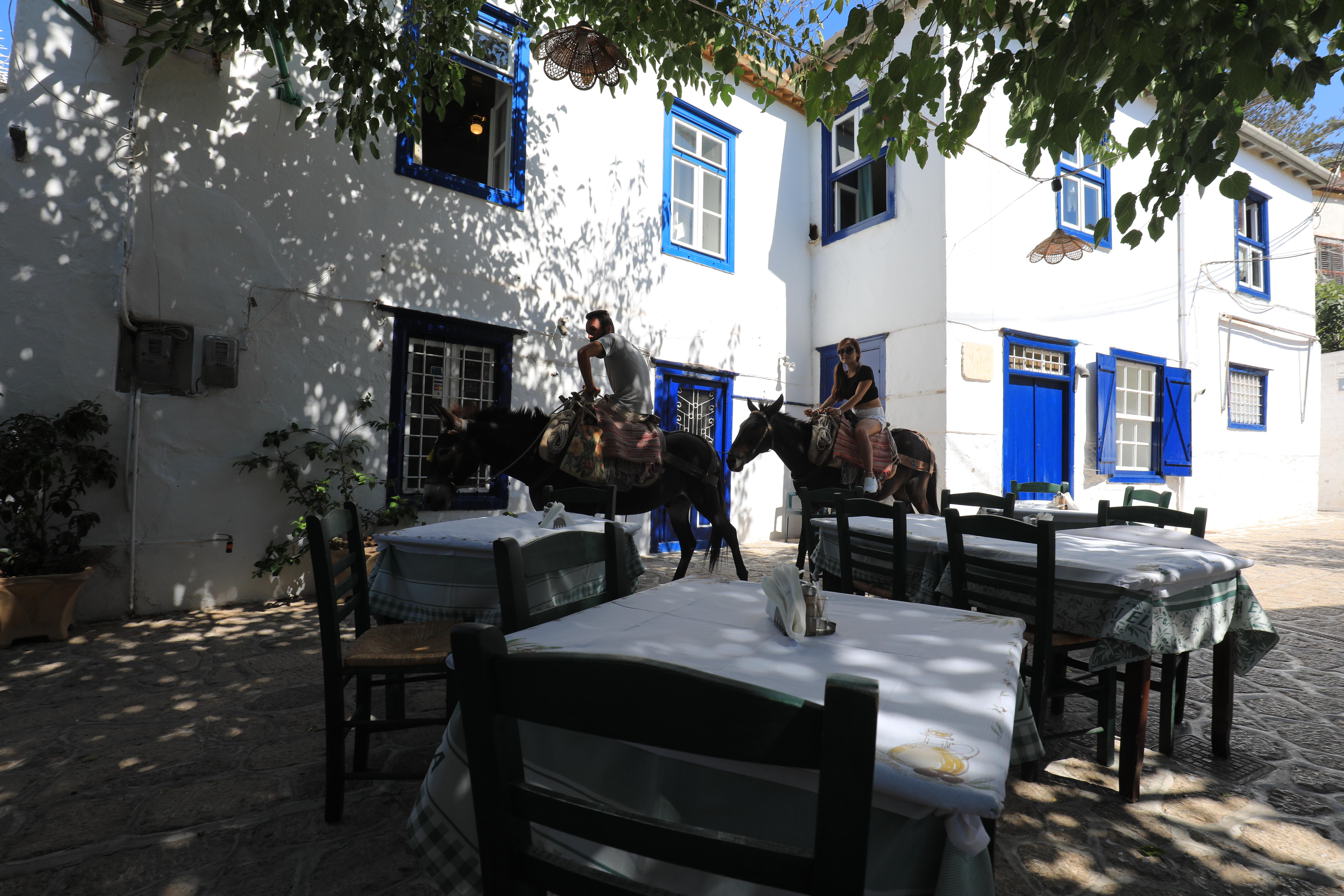 Turystyczna przejażdżka na koniach